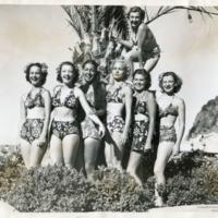 Фотография семи девушек в купальниках на фоне пальмы.